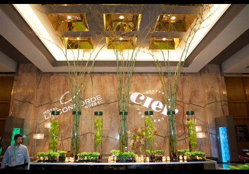 Bistro CIEL! Restaurant - Picture