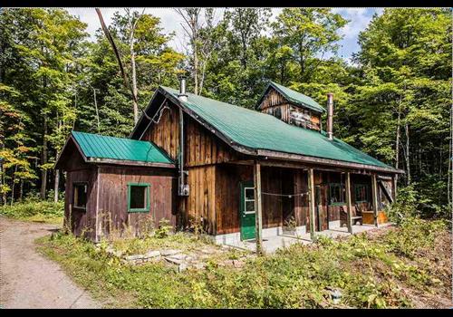Cabane d'à côté Restaurant - Picture