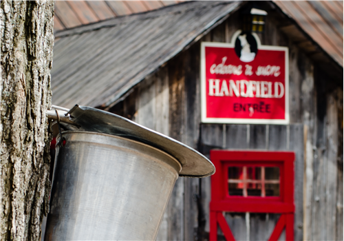 Cabane Handfield Restaurant - Picture