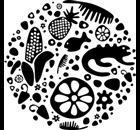 Chuuk Restaurant Restaurant - Logo
