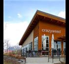 Crazyweed Kitchen Restaurant - Logo