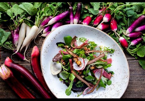 Edible Canada Restaurant - Picture