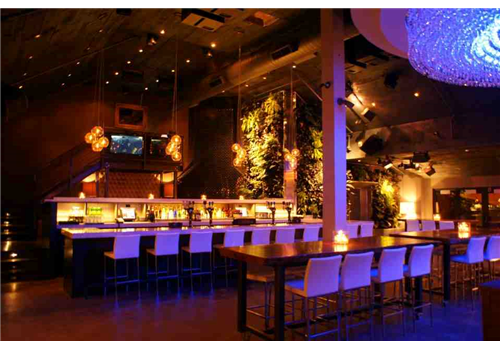 Ivy Bar + Kitchen Restaurant - Picture