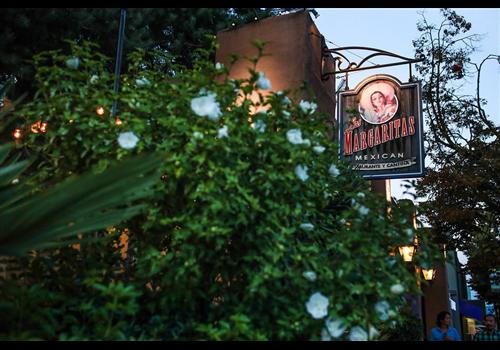 Las Margaritas  Restaurant - Picture