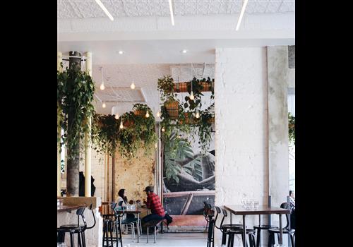 Otto's Bierhalle Restaurant - Picture