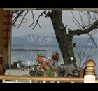Restaurant de la plage                Berthier sur Mer Restaurant - Logo
