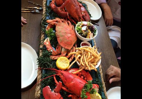 Oyster Restaurants Calgary